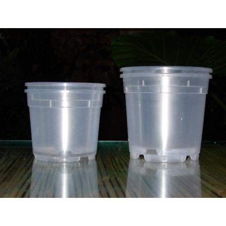 Vaso tondo trasparente 12cm / 10 vasi